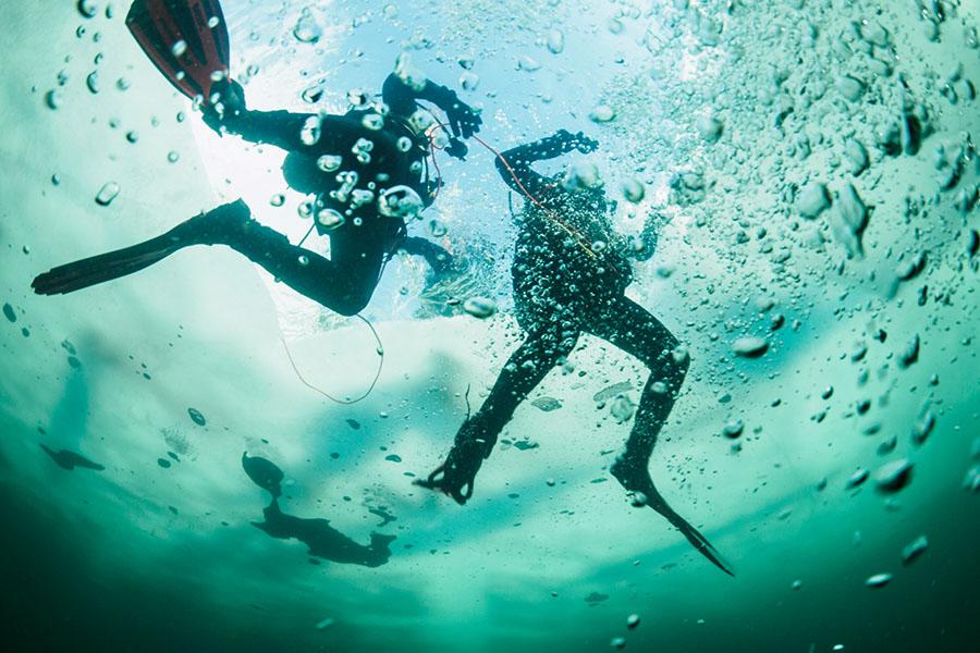 Unterwasseraufnahme von zwei Tauchern, die ihren Eistauchgang beenden.